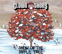 clown shoes 3